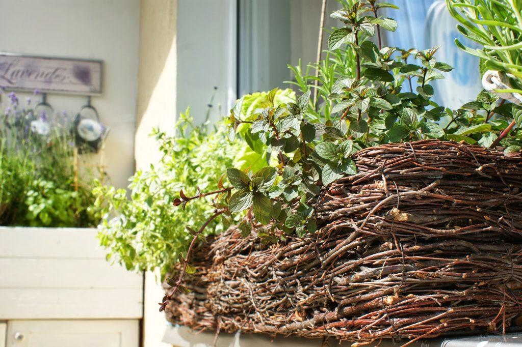 Lato W Pełni Mój Balkon Shekoku